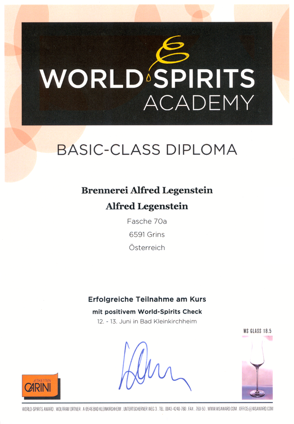 Diplom World Spirit Academy